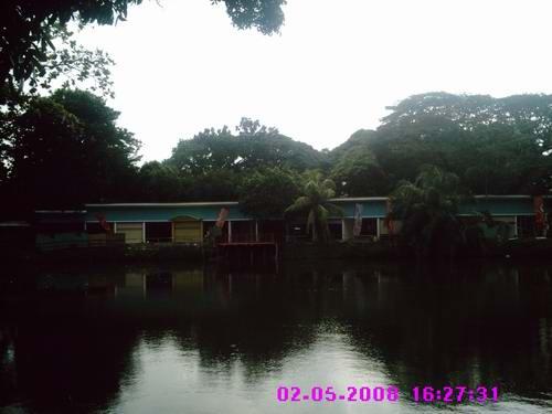 kambang-iwak-2.jpg