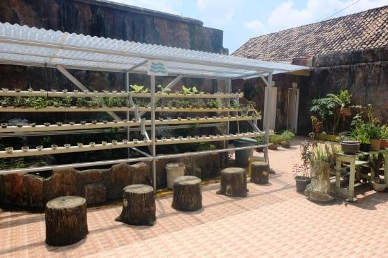 Halaman belakang sekolah yang juga dimanfaatkan untukj berkebun.